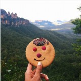A Blue Mountain tour, with a smiley cookie at Katoomba, overlooking the famous Three Sisters on the top left corner.