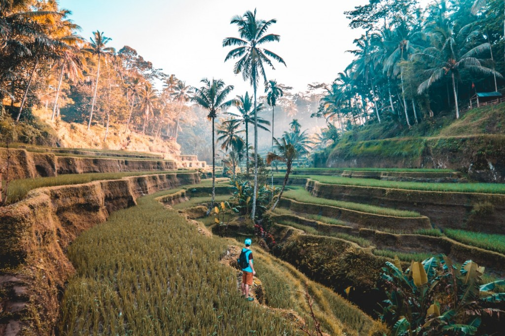 Bali, Indonesia - Hostelling International